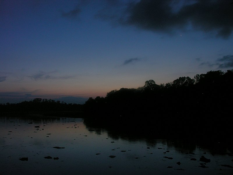 feb_17_1331_evening.jpg