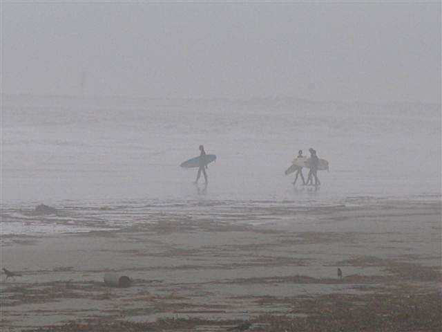 nov_07_sparky_017_surfers.jpg